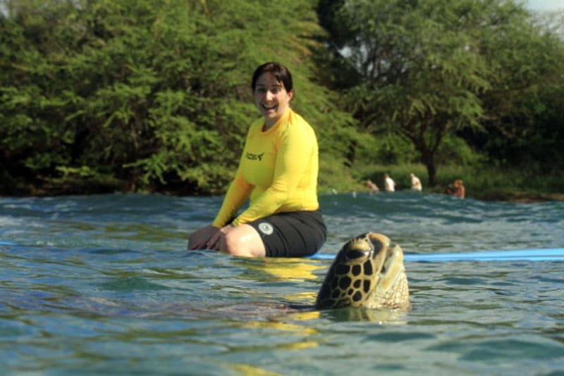 Surf with sea turtles